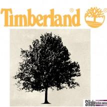 Timberland pianta 3500 alberi a Milano in collaborazione con Legambiente