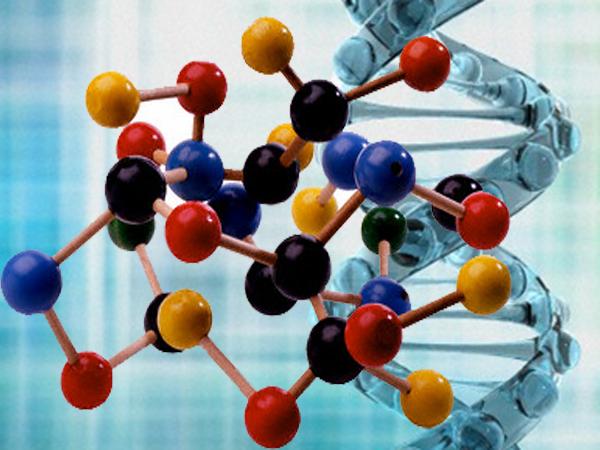 La dieta studiata sul DNA e sugli stili di vita