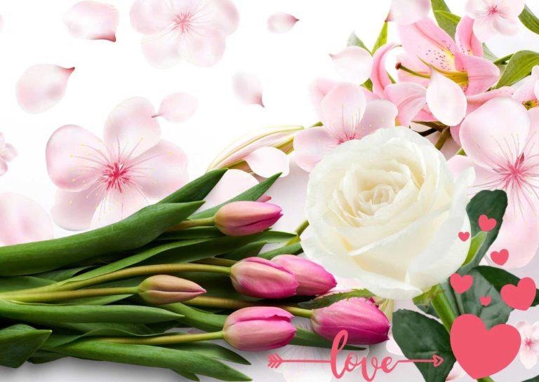 San Valentino 2020 - fiori