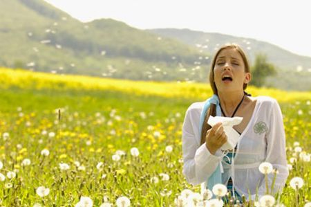 """Una breve guida sulle allergie e su come difendersi dal classico """"raffreddore da fieno"""""""
