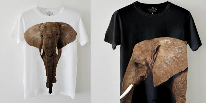 Edun sta con gli elefanti