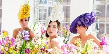Orchidea Collection by Philip Treacy