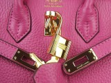 Hermes Birkin 25 Rouge Shocking Gold Hardware_05