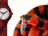 Hip Hop Python red