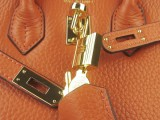 Potiron Orange Hermes Birkin 25 with Gold Hardware_05