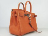 Potiron Orange Hermes Birkin 25 with Silver Hardware_02