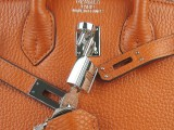 Potiron Orange Hermes Birkin 25 with Silver Hardware_05