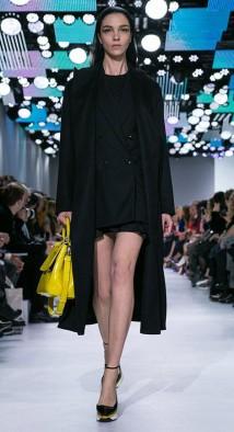 Dior A/I 2014