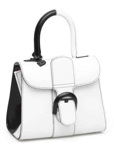 L'accessorio più cool : La borsa Delvaux