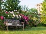 Le rose di Castel Quistini