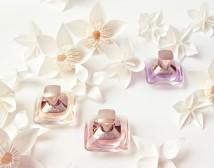 Profumi: Mini Fragrance Collection di Salvatore Ferragamo