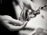 Mani di Chef - la mostra