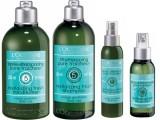 BeautyNews L'OCCITANE: 5 oli essenziali per un'istantanea ventata di freschezza su i tuoi capelli!