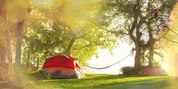 Voglia di campeggio?