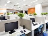 Le piante in ufficio? Meno stress e si lavora meglio