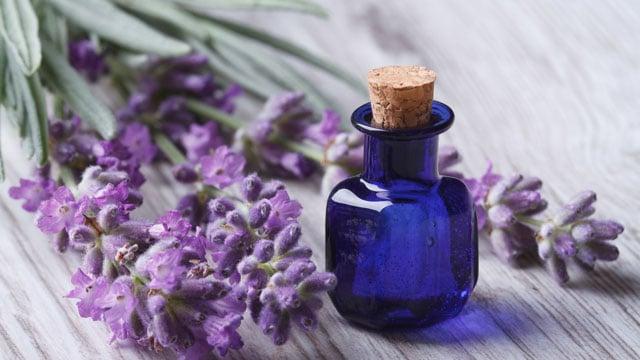 aromaterapia alla lavanda