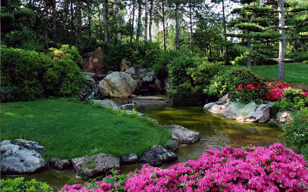 Nature fiori di bach